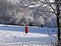 Great Sankey Linear Park - geograph.org.uk - 1701516.jpg