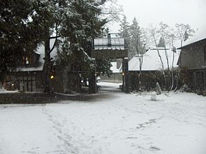 Green College, University of British Columbia - Main gate of Green College, University of British Columbia after a snowstorm