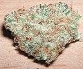 Green Crack Extreme.jpg