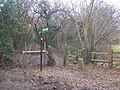Greensand Way crosses Greenhill Lane - geograph.org.uk - 1189042.jpg