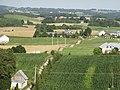 Gulbieniszki - panoramio (6).jpg