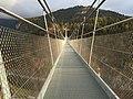 Hängebrücke SWISSROPE highline179, Reutte A - panoramio.jpg