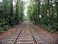HKG-Trasse-Kölner-Stadtwald-002.JPG