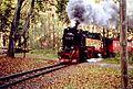 HSB 997241 am Bahnhof Steinerne Renne - EI206.jpg