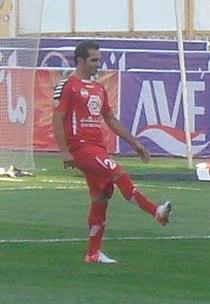 Hadi Norouzi 2013.jpg