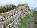 Hadrians wall - geograph.org.uk - 946994.jpg