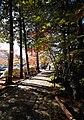 Hakone – Japan (4119686376).jpg