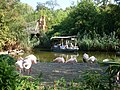 Hannover Zoo.jpg