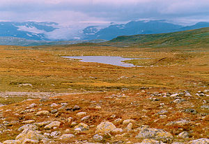 Plateau - Hardangervidda, the largest plateau in Europe