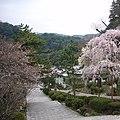 Hasedera Temple - panoramio.jpg