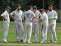 Hatfield Heath CC v. Thorley CC on Hatfield Heath village green, Essex, England 28.jpg