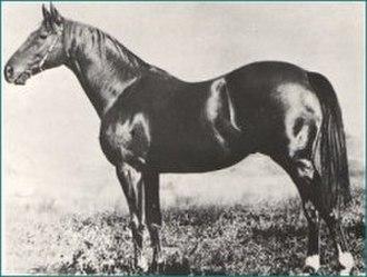 Heroic (horse) - Image: Heroic
