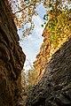Hessigheim - Felsengärten - steiler Aufstieg in den Felsen.jpg