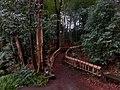 Higashikurume City Takebayashi Park - Jan 24 2021 various 15 15 47 232000.jpeg
