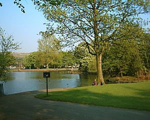 Hillsborough Park - The fishing lake