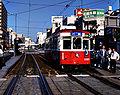 HiroshimaKoi.jpg