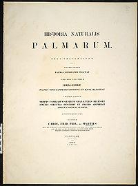 Historia naturalis palmarum cover