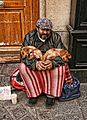 Homeless puppies, Paris, October 2008.jpg