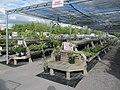 Horling's Garden Centre (6167854446).jpg