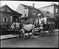 Horsedrawn garbage wagon, October 28, 1915 (MOHAI 6907).jpg