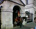 Horseguardssentry.jpg