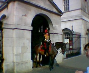 Busby - A King's Troop sentry outside Horse Guards wearing a busby