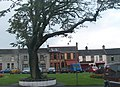 Houses and shops in the Lower Square, Castlewellan - geograph.org.uk - 1466947.jpg