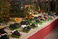 Huldenbergse feesten 2015 druiven.jpg