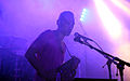 I-Wolf and the Chainreactions at Fluc Wanne WAVES VIENNA 2013 33.jpg