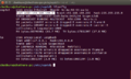 Ifconfig$1.png