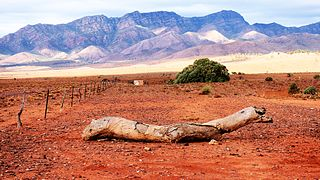 Flinders Ranges, South Australia Suburb of Flinders Ranges Council, South Australia