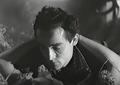Il lupo della Sila - Vittorio Gassman.png
