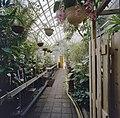 Interieur, overzicht plantenkas - Delft - 20404915 - RCE.jpg