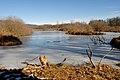 Inverno in paluda Brabbia.jpg