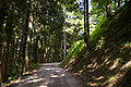 Iwamurajo01.jpg