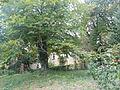 Jókai kertje 2012 (31).JPG