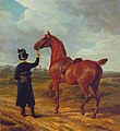 Jacques Laurent Agasse (1767-1849) - Lord Rivers's Groom Leading a Chestnut Hunter towards a Coursing Party in Hampshire - T02351 - Tate.jpg