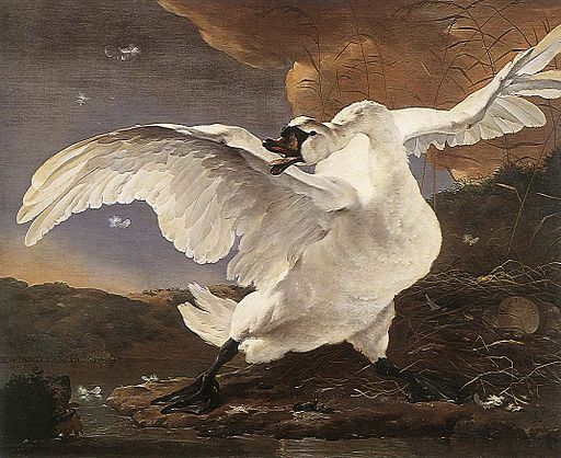Jan Asselijn - The Threatened Swan - WGA01030