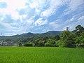Japan, Fukui-ken, Tsuruga-shi, 県道141号線 - panoramio.jpg
