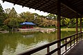 Japanese garden pond at Daisen Park in Sakai, October 2018 - 381.jpg