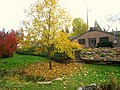 John A. Finch Arboretum - IMG 6868.JPG