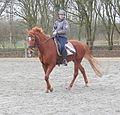 Jonge vrouw op haar paard.JPG