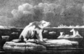 Journal of a Voyage to Greenland, in the Year 1821, plate 11 (cropped).png