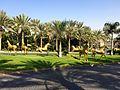 Jumeirah Al Qasr - panoramio (13).jpg