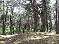 Jurapark, Solec Kujawski, Poland (www.juraparksolec.pl) - panoramio (15).jpg