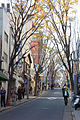 Kagurazaka Avenue.jpg