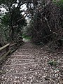 Kami Shima , 神島 神島灯台から観的哨 - panoramio - z tanuki (4).jpg