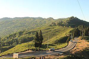Ilam District - Kanyam Tea Garden