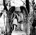 Katowice-cm ewangelicki aniol.jpg
