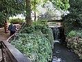 Kelsey Park Waterfall - 1 (17454852414).jpg